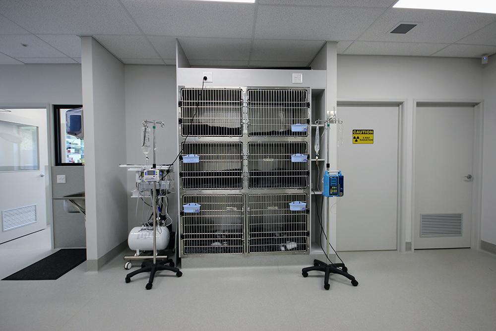 Clinic 5