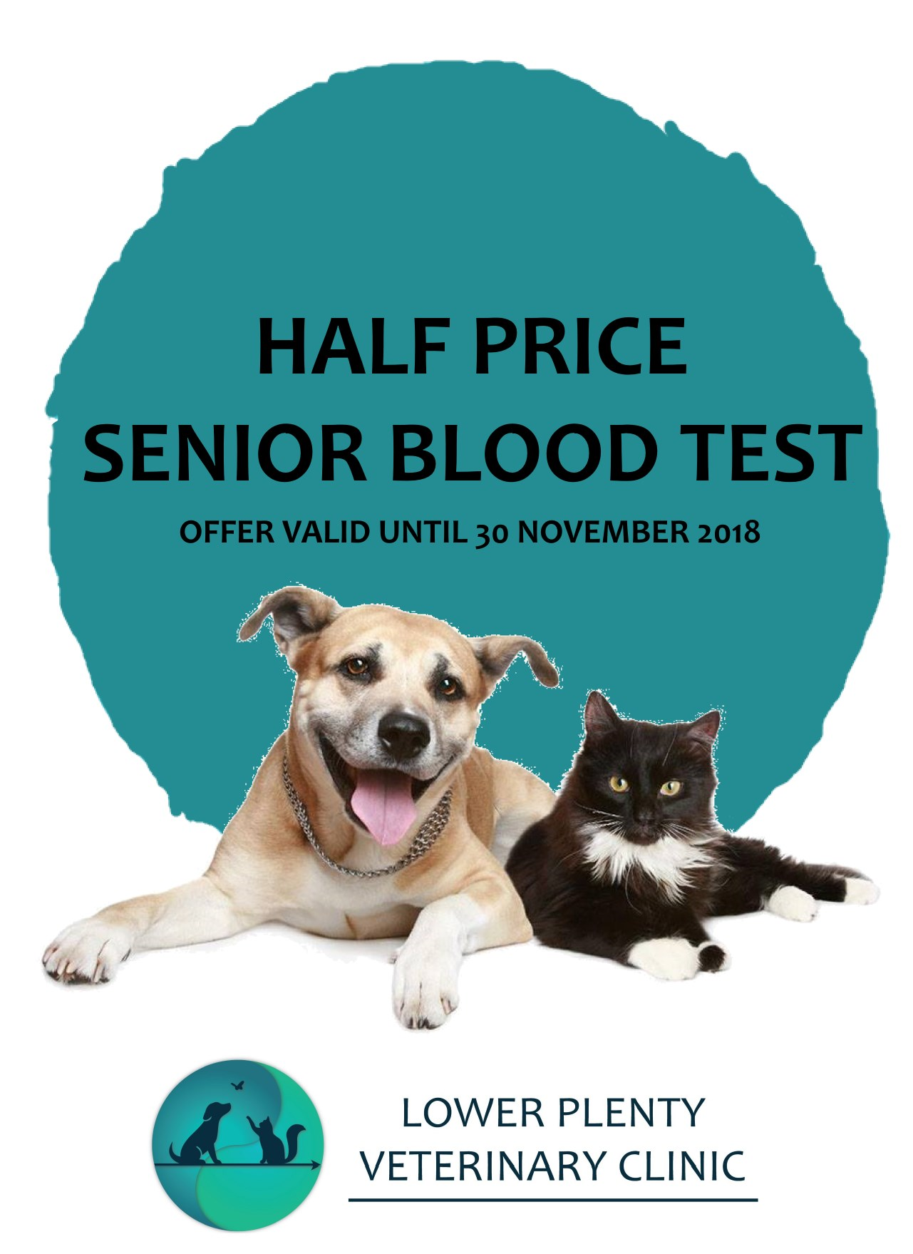 Half Price Senior Blood Test